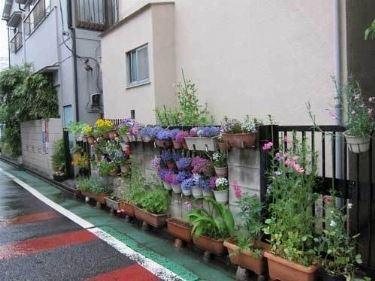esempio di fioriera da esterno
