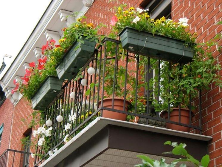 Fioriere per balconi vasi e fioriere balconi fioriti for Balcony garden ideas in dubai