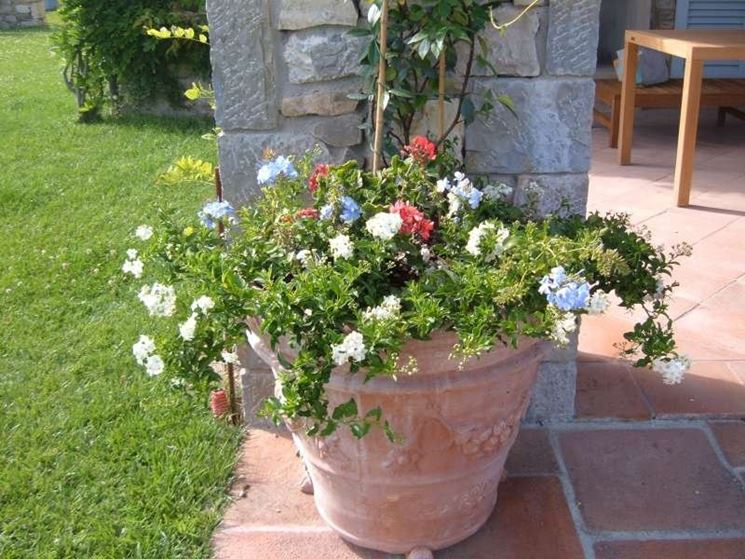 Fioriere terrazzo vasi e fioriere fioriere per il terrazzo - Giare da giardino ...