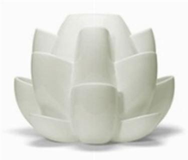 Esempio di un vaso psrticolare