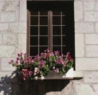 vaso alla finestra.