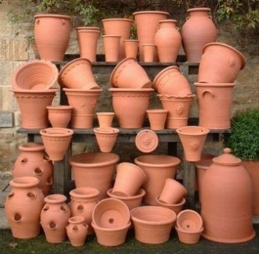 Vasi in terracotta dalle varie forme e dimensioni