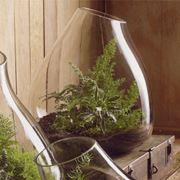 Esempio di vaso in vetro
