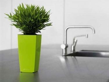 Vasi da interno per piante