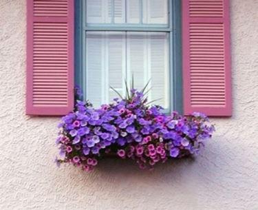 Vasi per piante - Vasi e fioriere
