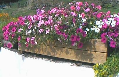 Vasi per piante vasi e fioriere for Vasi per piante