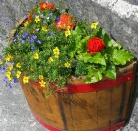 Vendita vasi vasi e fioriere for Vendita vasi plastica