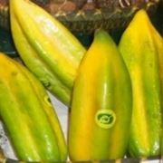 Frutti di Babaco
