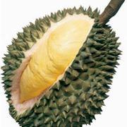 Frutto di Durian