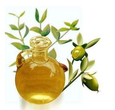 Olio estratto dal frutto di jojoba