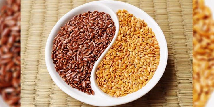 I semi di lino hanno un colore marrone