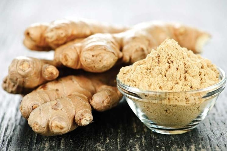 http://www.motherearthliving.com/gardening/herb-to-know-ginger-zingiber-officinale.aspx#axzz3OthHV9I5