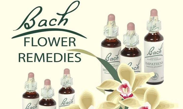 essenze fiori di bach