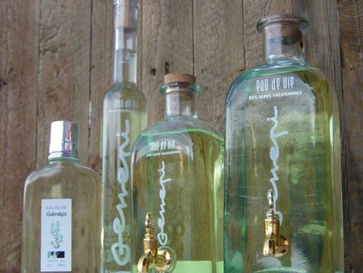 Liquore a base di genepi