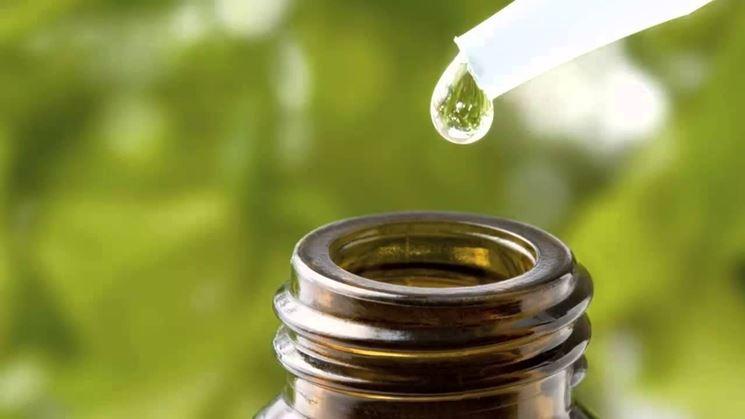 boccetta con olio essenziale di origano in primo piano