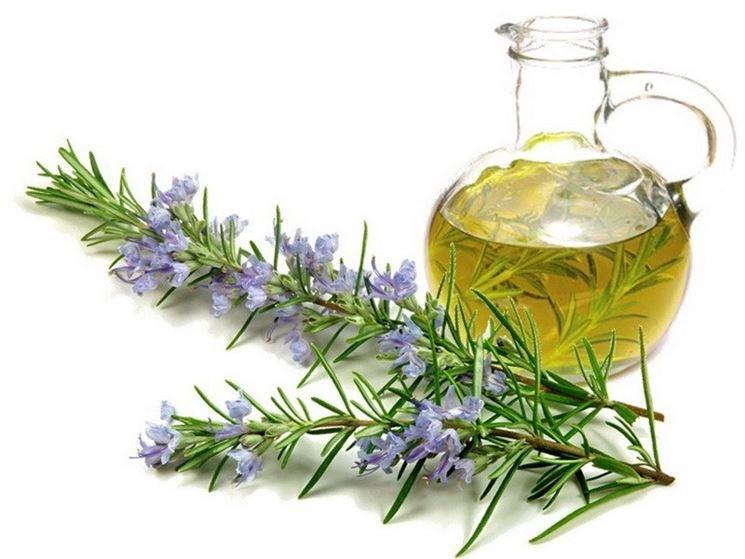 Olio essenziale estratto dalle foglie di rosmarino