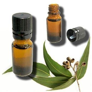 Olio essenziale all'eucalipto