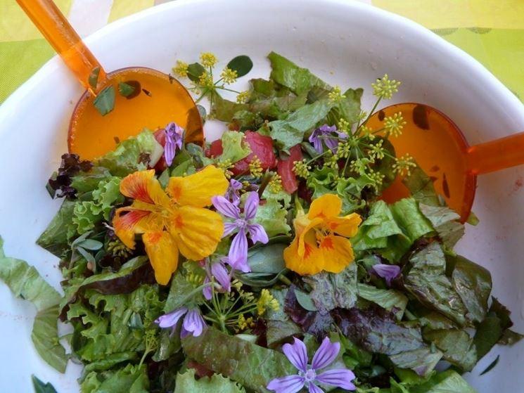 Fiori di malva usati in un'insalata