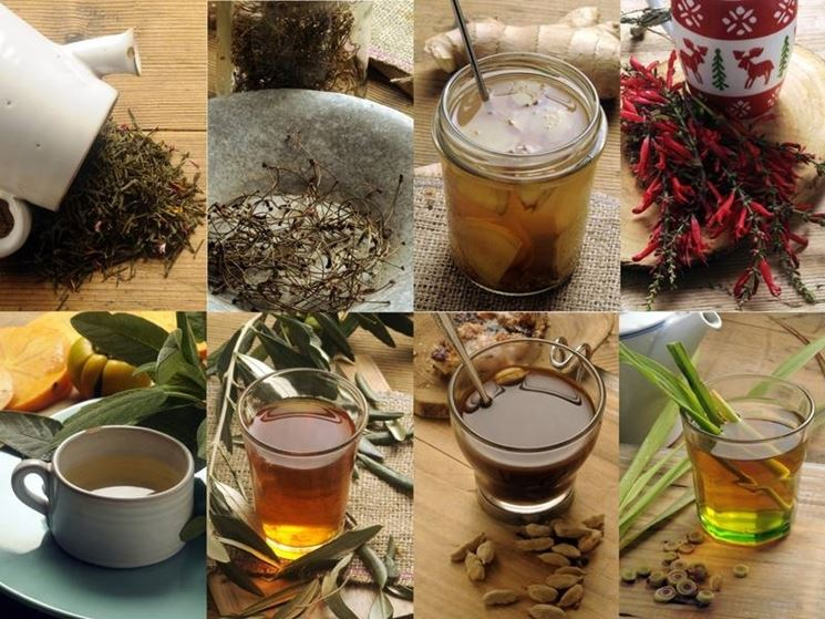 Le tisane, ingredienti e preparazione