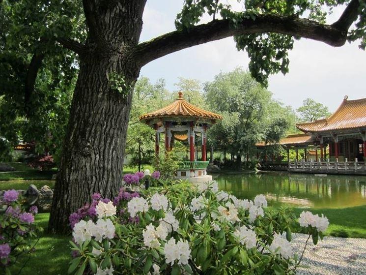 Giardino fiori cinesi