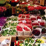 Un mercato dei fiori in una piazza