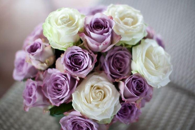 addobbi rose colorate
