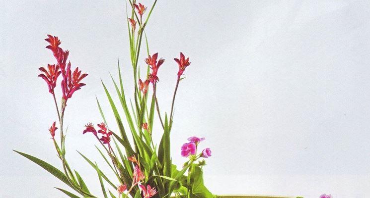 Raffigurazione di una composizione floreale simbolica