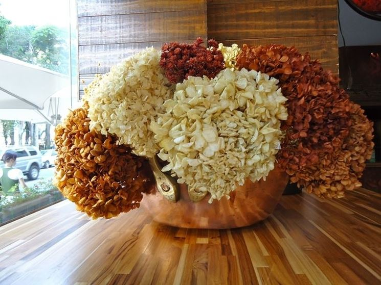 Composizione floreale di fiori secchi che richiamano i colori autunnali