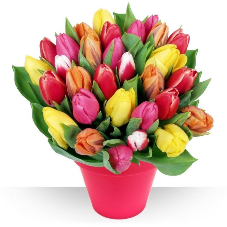 Una vivace composizione di tulipani.