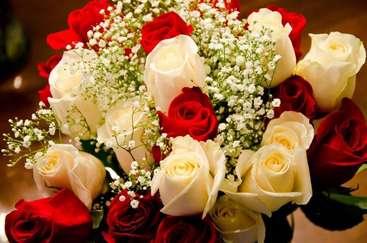 spesso Fiori compleanno - Regalare fiori - Quali fiori scegliere per il  QD91
