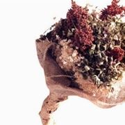 bouquetfiorisecchi