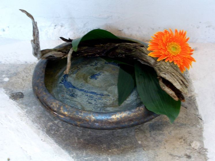 Semplice composizione ikebana
