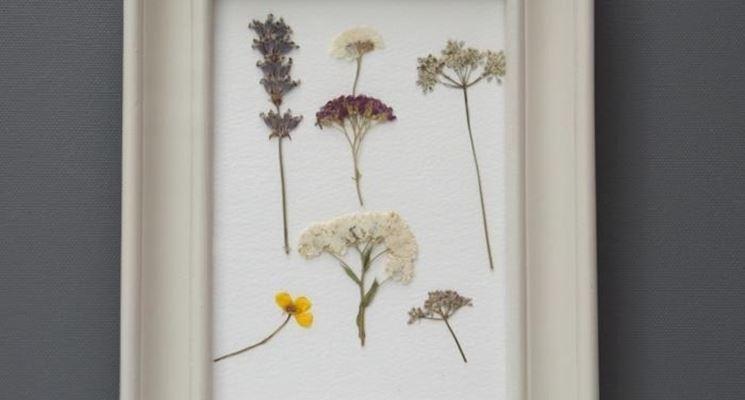 Quadro di fiori secchi