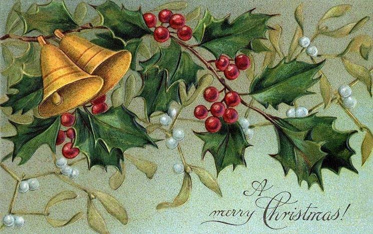Agrifoglio: la pianta del Natale.
