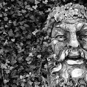 fontana del dio Dioniso circondata dall'edera