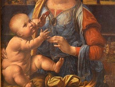 Particolare del quadro Madonna del garofano di Leonardo da Vinci