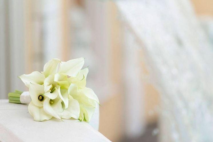 bouquet calle bianche
