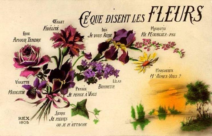 Una pagina illustrata del linguaggio dei fiori