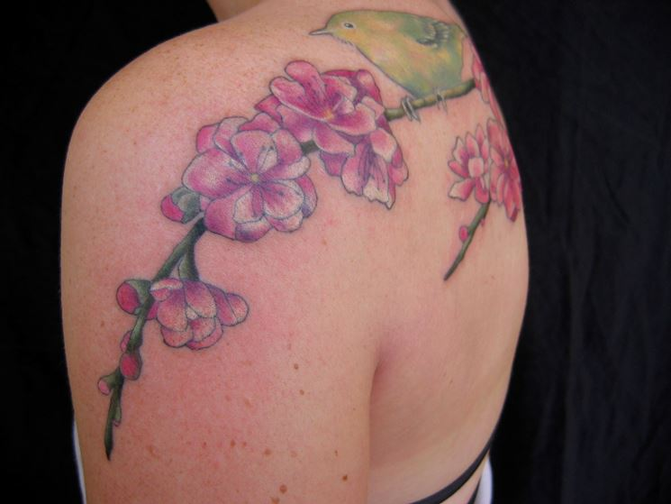 Tatuaggio fiori di pesco sulle spalle