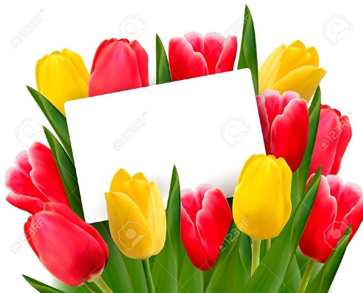mazzo tulipani gialli e rossi