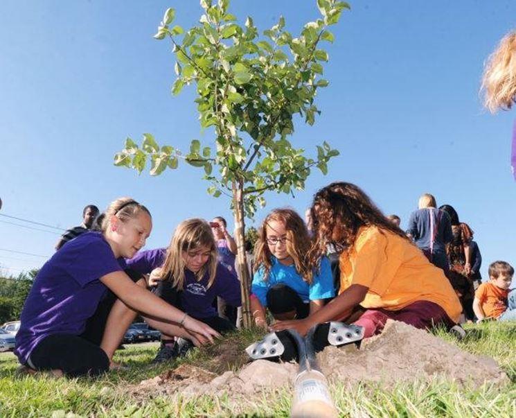 Bambini che piantano un albero di mele
