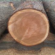 legno ciliegio