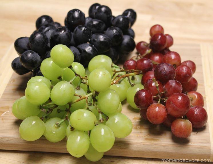 Specie diverse di uva