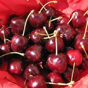 Varietà di ciliegia Durone Nero di Vignola
