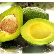 Il frutto della pianta di Avocado