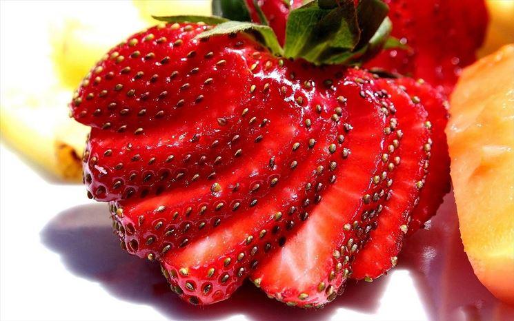 Piantine di fragole
