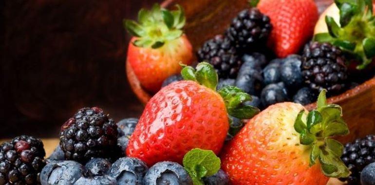 <h6>Coltivazione frutti di bosco</h6>More, lamponi, mirtilli o fragoline? Scegli il frutto che preferisci e scopri come coltivarlo!