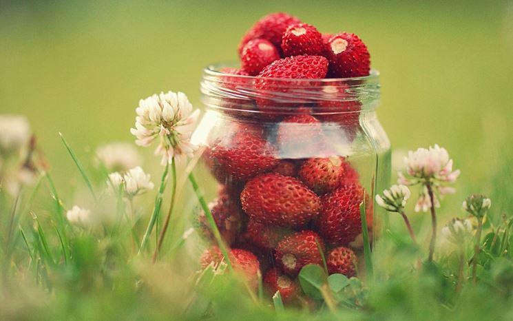 vasetto pieno di fragole