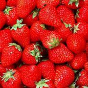 Piatto di fragole