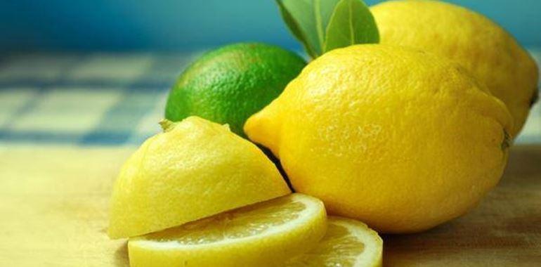<h6>Potare limone</h6>E� utile potare l�albero di limone? Come fare? Scopri tutti i segreti riguardanti la potatura della pianta entrando nella nostra pagina!